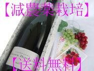 """【送料無料】【ラッピング代込】【減農薬】『相手の幸せ』を""""本気で考える""""ならギフトは【安心・安全】な「減農薬ワイン」を!!品のあるお客様に似合う""""特級畑""""の最高級シャンパンギフト(1本詰め)"""