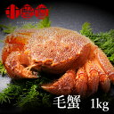 \SALE500円OFF/ 超希少 毛ガニ 特大 1尾1kg...