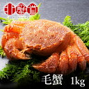 超希少 毛ガニ 特大 1尾1kg 毛がに 1kg カニ 蟹 ...