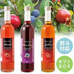 フルーツビネガーおいしい酢ザクロ・ブルーベリー・アセロラ3本セット