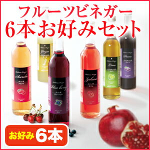 フルーツビネガー飲むおいしい酢お好み6本セット【飲む酢】【果実酢】【HLS_DU】【RCP】10P09Jan16【送料無料】