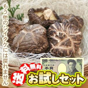 【送料無料】大分産原木干ししいたけどんこ65gおためし原木椎茸セット!しいたけ好きもニッコリの1000円ポッキリ