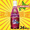 北海道のプレミアム果実「ハスカップ」の美味しさをリボンちゃんがお届します。ハスカップの芳...