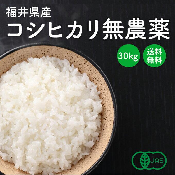 小嶋農産 福井県産コシヒカリ 【JAS認定 無農薬】 白米・玄米 30kg 産地直送 送料無料
