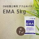 LOHAS material EM珪藻土専用 コンクリート用 灰汁止め パテ材 EMA 5kg/袋