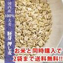 国内産100% 胚芽押し麦 300g お米と同梱で2袋まで送料無料