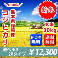 熊本県産阿蘇コシヒカリ30kg