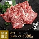 【焼肉】焼肉でも人気部位近江牛 ハラミ300g【冷凍】