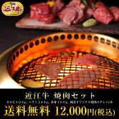 牛肉 総内容量1.1kgバーベキューに最適!近江牛焼肉セット【あす楽対応商品】御礼・御祝・お中元