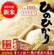 28年産岡山県産ひのひかり5kg 送料無料 香り、艶、粘りのバランスが良く、食欲をそそります。10kg・20kg・はさらにお買い得価格になっています。ヒノヒカリ ひのひかり
