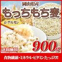 29年岡山県産大麦もっちもち大麦900g
