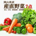 岡山県産朝穫れ野菜詰め合わせ7点セット 送料無料 北海道・沖縄は756円送料がかかります。