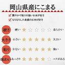 お米 5kg にこまる 岡山県産 (5kg×1袋) 令和2年産 送料無料 3