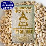 新麦 キラリもち麦 5kg 令和3年 岡山県産 国産100% もち麦 送料無料