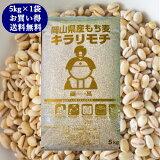 キラリもち麦 5kg 令和2年 岡山県産 国産100% もち麦 送料無料