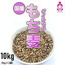 国産 もち麦 ダイシモチ 10kg (5kg×2袋) 紫もち麦...