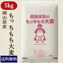もっちもち大麦 5kg 令和元年 岡山県産 送料無料