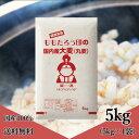 大麦 (丸麦) 国内産 5kg (5kg×1袋) 送料無料
