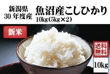 平成30年度産新米 渡辺さんの作った魚沼産こしひかり 10kg【阿部幸製菓】