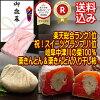 栗きんとん/栗柿/栗きんとんと栗柿詰合わせ/ケンミンSHOW