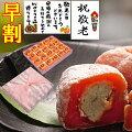 栗柿/市田柿