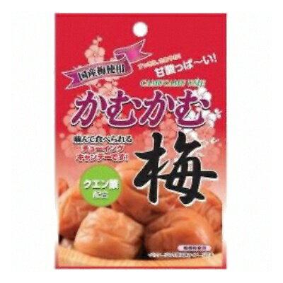 あめ・ミント・ガム, あめ・キャンディ  30g 10 (4901625421149)
