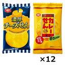 (全国送料無料) 亀田の濃厚チーズとカレーせんべいのセット (2種・計24個)