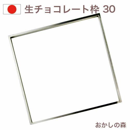 生チョコ枠 300mm角(大) チョコレート型 モルド お菓子 ショコラ