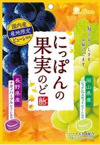 【心ばかりですが…おまけつきます☆】ライオン菓子にっぽんの果実のど飴72g×6袋入