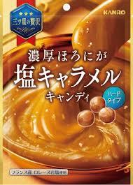 【心ばかりですが…おまけつきます☆】カンロ濃厚ほろにが塩キャラメルキャンディ70g×6袋入