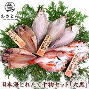 干物好きのあの方へ♪【送料無料】日本海とれたて干物セット「大黒」(だいこく)《のどぐろ・あじ・白かれい》