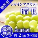 岡山県産 シャインマスカット 晴王 糖度18度 秀品 3〜5房2kg ...