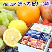 選べる 国産 果物 ゼリー 詰め合わせ 3種セット(6個入) ギフト 手土産 プレゼント 正午までのご注文で当日発送