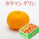 みかん カラマンダリン 秀品 2L-3Lサイズ 5kg JA