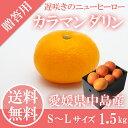 \送料無料/ カラマンダリン 秀品 S〜Lサイズ 1.5kg (4月中旬から発送)JAえひめ中央 愛...