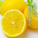 \ 国産レモン / 5kg JA全農 など 市場から直送 安...