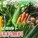 【スーパーセール期間限定30%off】送料無料 野菜セット ...