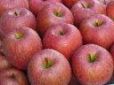 送料無料 青森産 ワケあり サンふじ 蜜入りりんご 高糖度 5kg(16〜20玉)お歳暮 ギフト クリスマス プレゼント