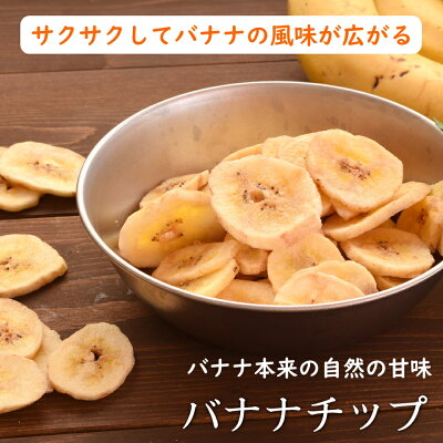 厳選のバナナチップフィリピン産バナナチップ500g入り【フィリピン産バナナチップ500g】