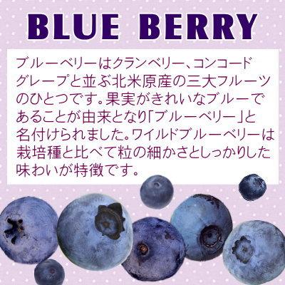 ドライフルーツ>ワイルドブルーベリー(野生種)