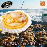 ★次回は12月からの水揚げとなります。日本最大級 冷蔵便『特大 活ホタテ貝 直送 便:7キロ詰め★北海道野付産天然貝』 送料無料 (L〜2Lサイズ平均23-30枚前後)《到着日指定不可》《冷凍商品同梱不可》 殻付き帆立 ほたて 天然物 野付 ギフト