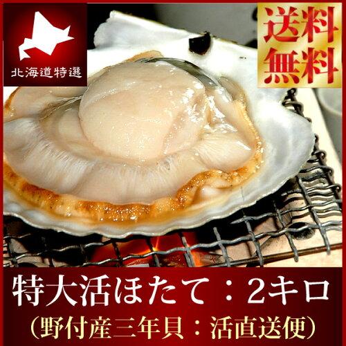 送料無料 『特大活ホタテ貝2kg詰め』 ほたて 帆立(L-2Lサイズ...