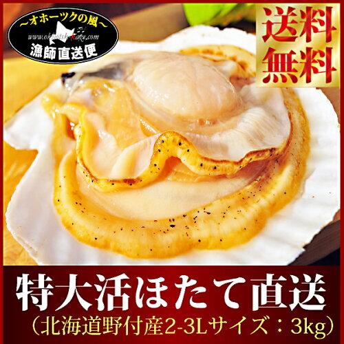 送料無料『特大天然活ホタテ貝直送便:3kg』(北海道 野付産L-...