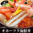 北海道 送料無料『オホーツク海鮮丼セット:B(4人前)』いくら!特大ほたて!特...