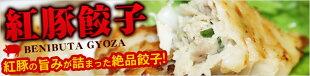 琉球島餃子