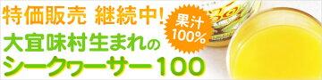大宜味村生まれのシークワーサー100