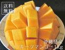 【送料無料】沖縄産完熟キーツマンゴー【優品】1kg(1〜2玉