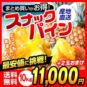 スナックパイン 予約開始!沖縄産のスナックパインを産地直送でお届けします!嬉しいおまけ付 ...