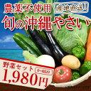 野菜セット|自然栽培でとれた新鮮な沖縄の野菜を、産地直送でお届けします|野菜セット|野菜|詰...