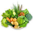 沖縄で採れた新鮮な野菜セット。普段の生活に欠かせない15品目選んだ野菜の詰合せで、様々なお...